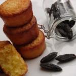 Mini fondants aux amandes et à la fève tonka